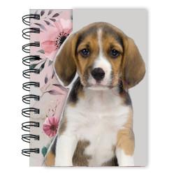 Paso Beagle spirálfüzet mágneses zárral